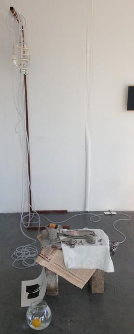 Work at RCA Dyson Galler