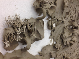 Clay experiments