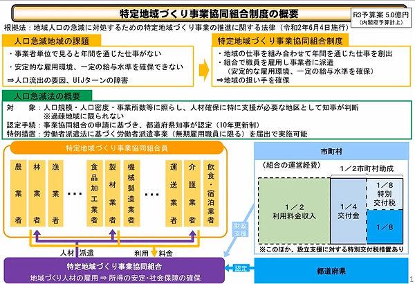 特定地域づくり事業協同組合制度.jpg