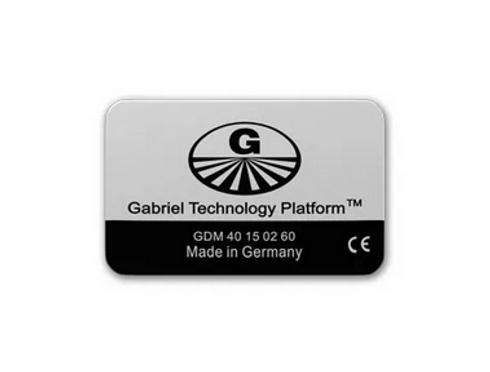 gabrielchip bienetre-solutions.com.png