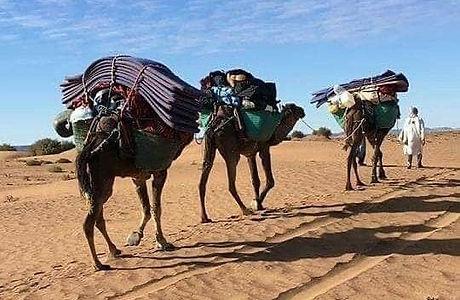 Trek desert Maroc_edited.jpg