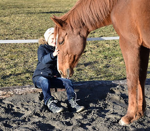 Kinder, Pferde, Natur, Erlebnis, Selbstvertrauen, Spass, Beziehung, Freundschaft