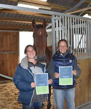 Ausbildung, Coaching mit Pferden, Energetisches Arbeiten,