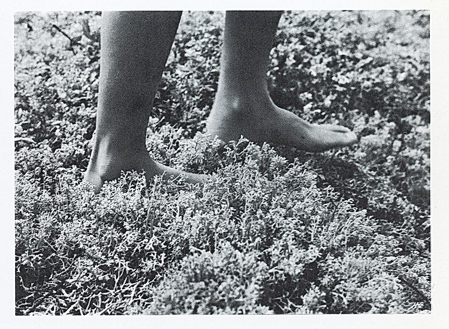 Feet and lichen_Rhona_Eve_Clews.png