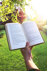 sunset-hand-garden-book.jpg