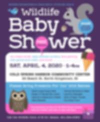 WRARI-babyshower2020-v1.png