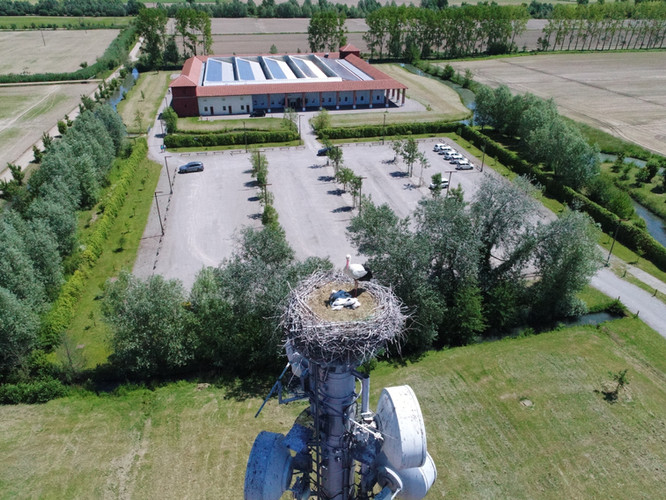 Storks & Innovation Center Giulio Natta