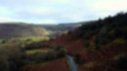 Aerial Drone View Autumn Colours