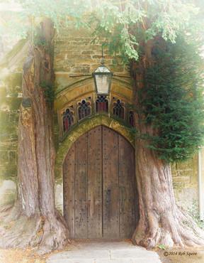 Hobbit's Back Door
