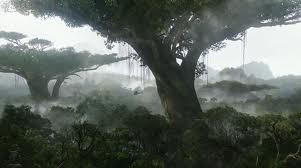 As Árvores são os pulmões do mundo