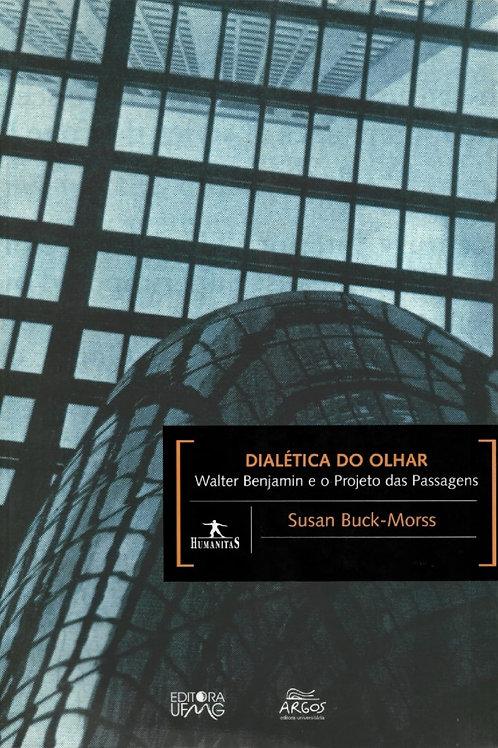 DIALÉTICA DO OLHAR: WALTER BENJAMIN E O PROJETO DAS PASSAGENS