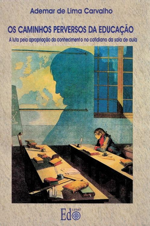 OS CAMINHOS PERVERSOS DA EDUCAÇÃO: A LUTA PELA APROPRIAÇÃO DO CONHECIMENTO NO CO