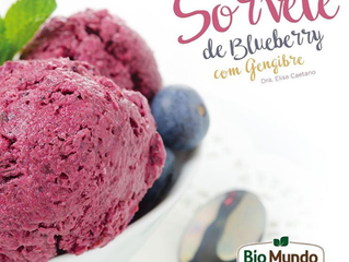 Sorvete de Blueberry com Gengibre