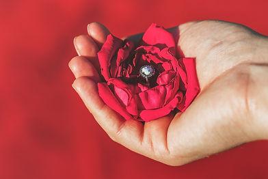 rose hand precious-423786.jpg