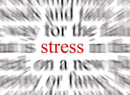 Le Stress de la rentrée ...