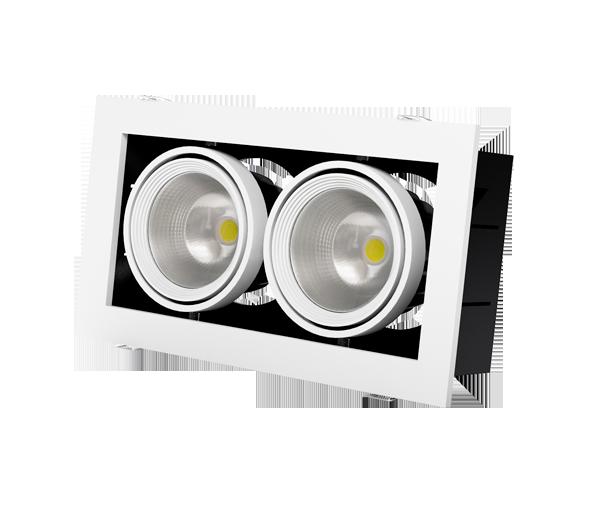 Встраиваемый светодиодный карданный светильник Grazioso 2 LED 30 для освещения магазинов и офисов