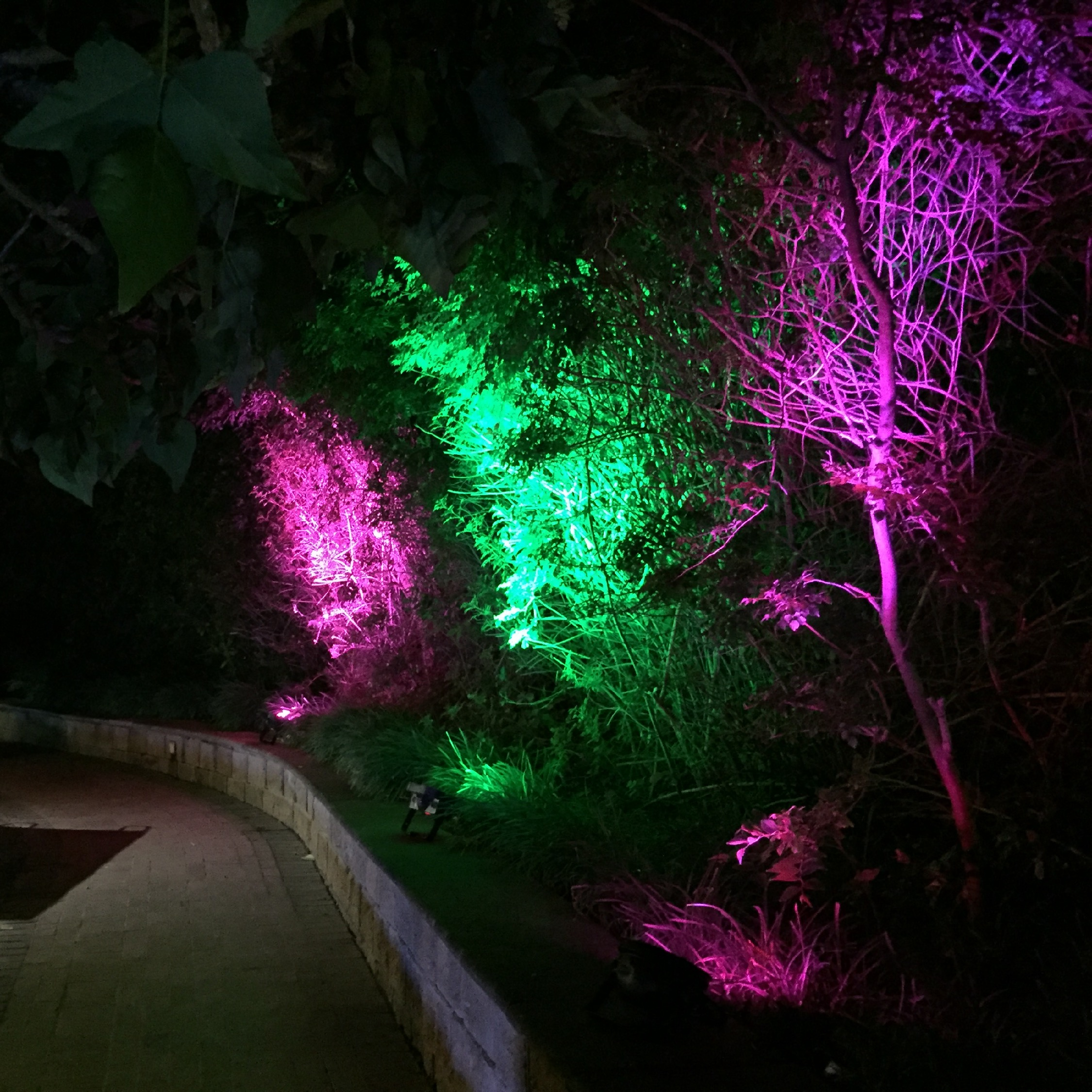 Outdoor Floodlights