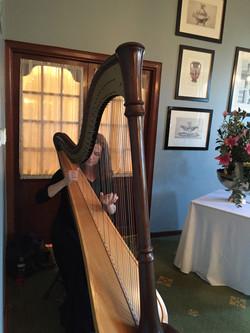 Roelien Solo Harpist Cape Town