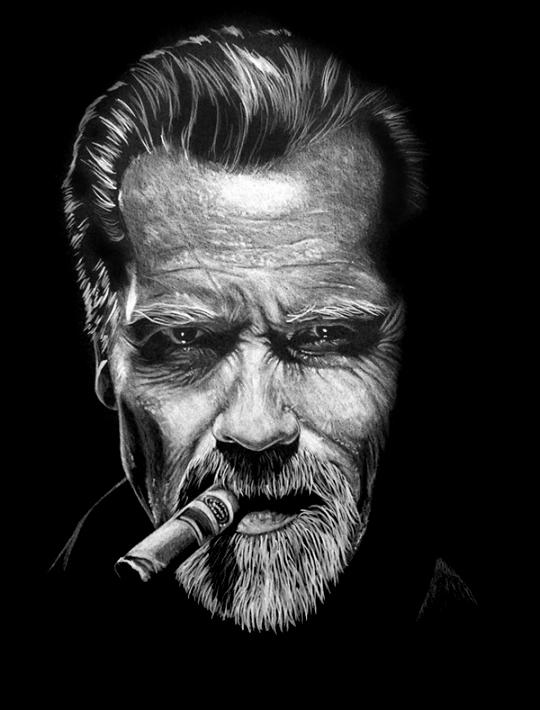 Arnold Schwarzenegger / Policromo