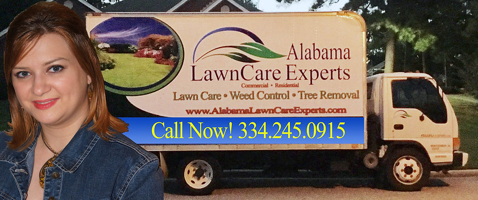 Alabama Lawn Care Experts, Lawn Care Company in Montgomery, AL, They are the Top 3 Lawn Care Companies in Montgomery, Grass Cutting, Lawn Service, Weed Control, Weed Eating, Shrub Trimming, Lawn Cutting in Montgomery, Pike Road, Deer Creek, Lake Forest, Commercial, Residential Lawn Care Service