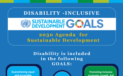 SDG inforgraphic image section