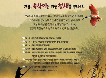 [정기생태관광]12/8-9 창녕 우포늪 생태관광 참가자 모집