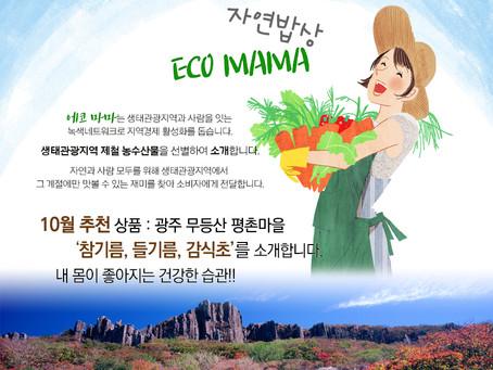 [에코마마] 광주 무등산 평촌마을 제품을 소개합니다.