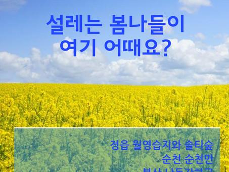 [카드뉴스] 설레는 봄나들이 여기 어때요?