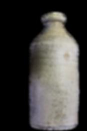 Robert Oram, ginger beer bottle, sydney archaeology, brewer, cordial maker, dolphin inn, settlers arms, jenny lind inn