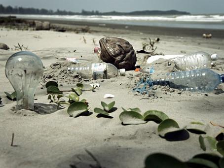 守護海洋永遠不嫌晚,你今天開始就可以為海洋做的5件事(教育)
