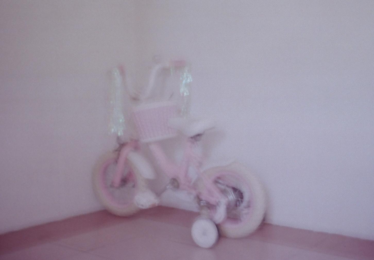 final Bike.jpg