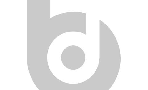 Bunk Design logo