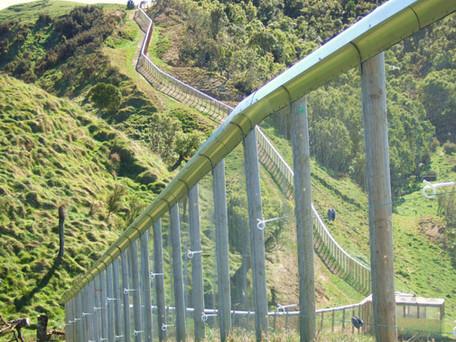 kiwi_creche_fence.JPG
