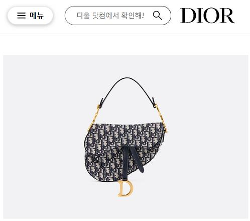 [Dior ]#디올 OBLIQUE SADDLE 백 C08161130