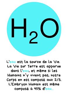 L'eau_est_la_source_de_la_vie._La_vie_su