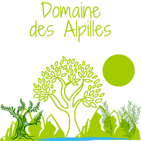 Copie de Domaine des Alpilles (1).png