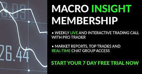Macro Insight Banner.jpg