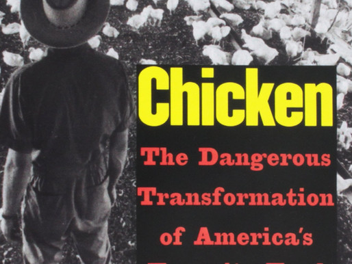 Poultry Industry: Human and Animal Perversity