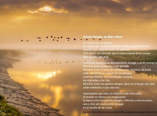 Mary Oliver, maga de la naturaleza