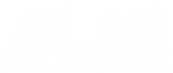 white-logo-on-transparent_4x.png