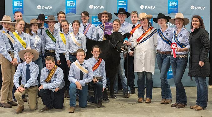 Royal Melbourne Cattle Show