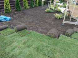 озеленение участка, рулонный газон