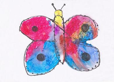 Rafa mariposa.jpg