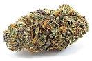 legalize-ac04f79b8be81a15.jpg