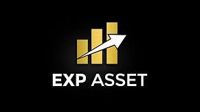 exp asset návod cz
