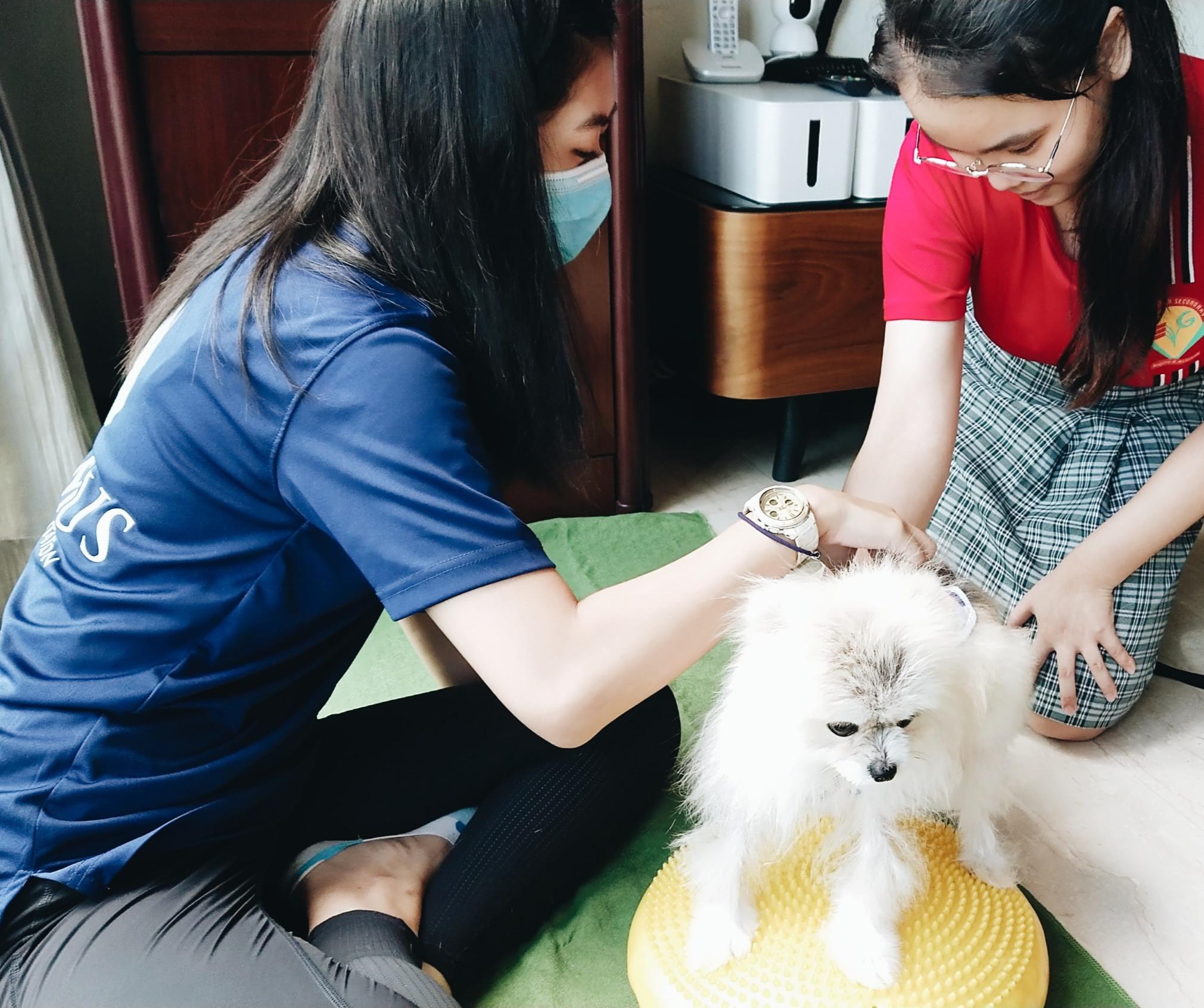 Maintenance Rehabilitation