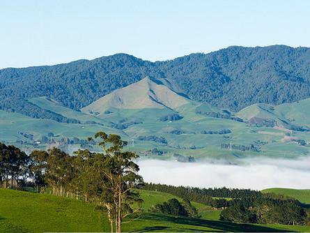 Maungatautari Reserve