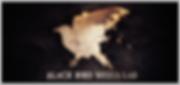 Black Bird Media Lab logo (color art cmy