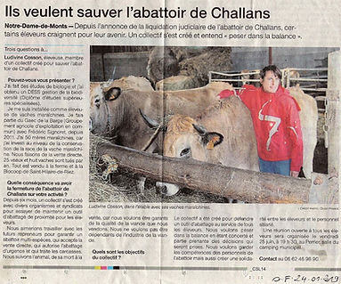 Article OF Abattoir.JPG