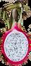 White Dragonfruit.png